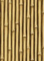 Bamboo Room Setter. Size for garage?