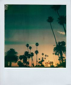 this sort of makes me want to abandon every other camera ever made and run off with a #polaroid.