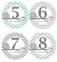 Baby Monthly Milestone Growth Stickers in by GinaMarieOriginals