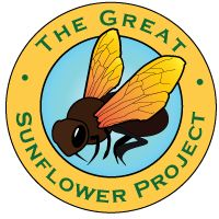The Great Sunflower Project -- All you have to do to participate is plant sunflowers and when they bloom, observe bee activity on the flowers. It takes no more than 15 minutes per observation.  http://www.greatsunflower.org