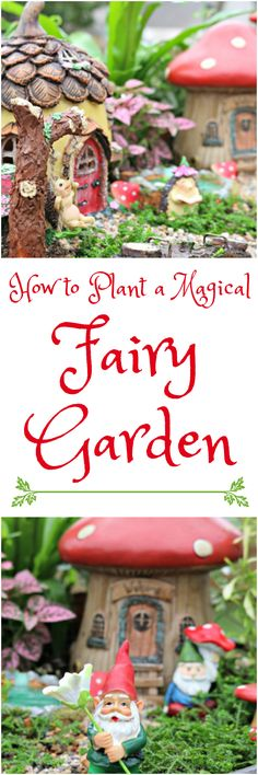 How to plant a magical fairy gardens with plants, gnomes, hedgehogs and little houses...a fun, kid friendly activity the whole family will love. Can be planted with houseplants, outdoor plants, succulents and herbs! via @Mom4Real
