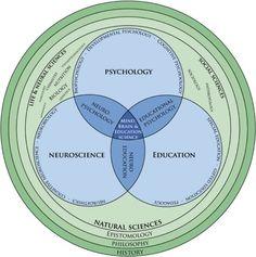 la neurociencia, la enseñanza, la psicología y la educación, la mente, el cerebro, y Ciencias de la educación) | E-Learning-Inclusivo (Mashup) | Scoop.it