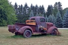 Now this is a super groovy new twist on the 'old truck in the field' - I love it!!