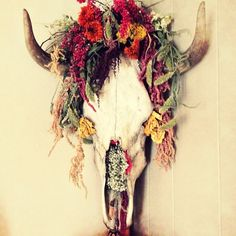 It's Fall Y'all! How pretty would this floral decor cow skull look on your front door in lieu of the traditional Fall wreath?!