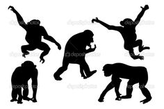 векторные рисунки обезьянка: 19 тыс изображений найдено в Яндекс.Картинках