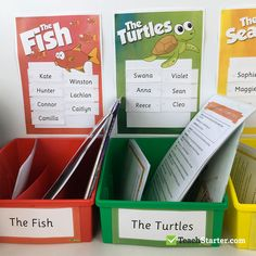Guided Reading Storage Solution