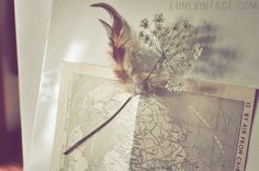 DIY: Feather magnet. [Violet Bella // Roots and Feathers]
