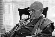 D.T. Suzuki on What Freedom Really Means and How Zen Can Help Us Cultivate Our Character | Brain Pickings - photo by Mihoko Okamura