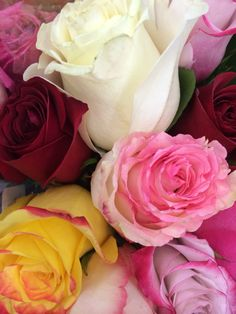 Flowers -my pics!