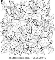 Find Lily Flowers Line Art Drawing Coloring stock images in HD and millions of other royalty-free stock photos, illustrations and vectors in the Shutterstock collection. Spring Coloring Pages, Cute Coloring Pages, Flower Coloring Pages, Adult Coloring Pages, Coloring Books, Flower Art Drawing, Floral Drawing, Color Pencil Art, Art Plastique