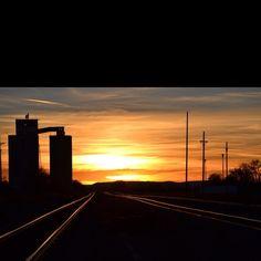 Rail yard in Tucumcari