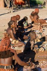 Himba women sell souvenirs. stock photo