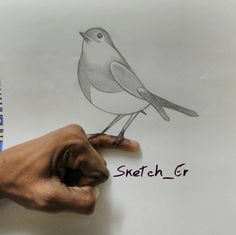 I don't know where it came from!  #PencilDraw #PencilDrawing #Pencil #Draw #Drawing #PencilSketch #3D #3DArt #Sparrow #Creative #Creativity #InstaArt #InstaDraw #Hobby #Passion #Realistic #Sketching #Artist #Art #Artistic #Outlines #Shading  #Sketcher #SketcherGourav #Bird #Artsy #imagination #disclart #Sketch #TalentedPeopleInc by sketch_er