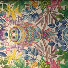 Johanna Basford   Picture by Debby   Colouring Gallery Colouring, Coloring Pages, Joanna Basford, Zentangle, Doodles, Gallery, Owls, Painting, Animals