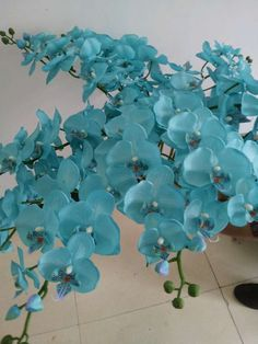 turquoise phalaenopsis, blue moth orchid flower. silk orchid. USD0.83/pc only. want to buy? contact me