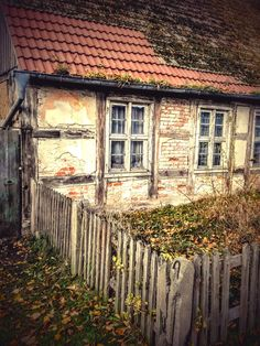 """Annenwalde north of Berlin. Sometimes you stumble into places and you're like """"Wow, I'd like to make a film in this..."""""""