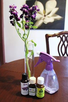 DIY Disinfectant Spray: essential oils 1 Cup Water 20 Drops Lavender Essential Oil 20 Drops Thyme or Eucalyptus Oil 10 Drops Tea Tree Oil