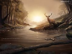 As the deer pants for water, so my soul thirst after you [God]. Great wallpapers for windows computers at Think Radiant.