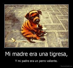 Mi madre era una tigresa,