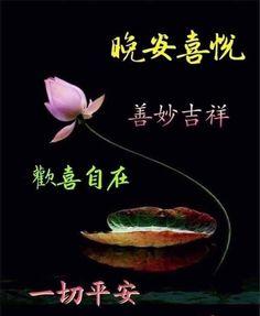 Good Night Massage, Movie Posters, Movies, Films, Film Poster, Cinema, Movie, Film, Movie Quotes