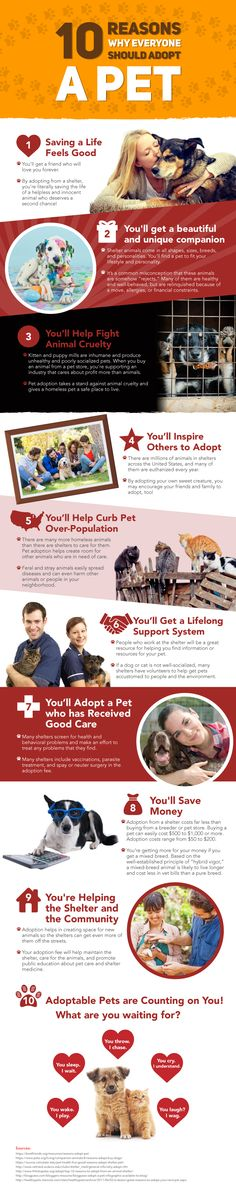Would you love to have more love in your life? Is there room for more love in your home? If yes, then adopting a pet is probably the perfect move for you! Quick Navigation1 Please share infographic below so we can save more animals together 2 1. Saving a Life Feels Good3 2. You'll Get …
