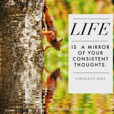 We always get to experience what we project to ourselves on the inside as real life scenarios on our outside. Life!