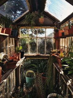 A tiny secrect greenhouse garden. Future House, My House, Greenhouse Gardening, Cheap Greenhouse, Greenhouse Ideas, Album Design, House Goals, Architecture, My Dream Home