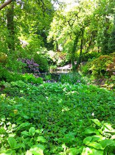 Clyne Gardens, Swansea, South Wales.