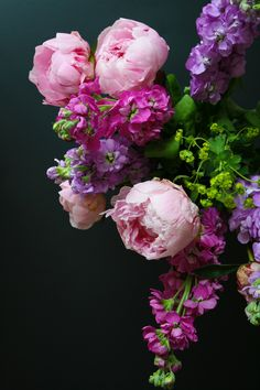 Beautiful Peonies by Hungry Hippie.