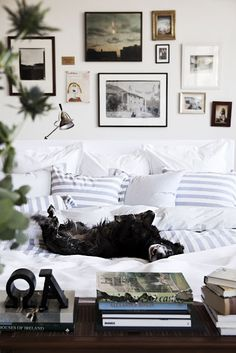 Remember: cozy!