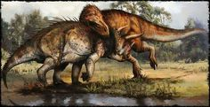 T-Rex attacking a Triceratops