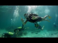 Scuba dive in Bocas del Toro, Panama with Outward Bound Costa Rica.