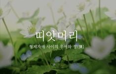 23 Message Quotes, Wise Quotes, Butterflies In My Stomach, Learn Korean, Typography, Lettering, Korean Language, Proverbs, Cool Words