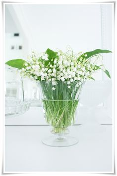 i saw your post on lily of the valley --this is a chic centerpiece. lily of the valley is so. retro/vintage/antique feeling to me. My Flower, White Flowers, Beautiful Flowers, Birth Flower, Love Lily, Cottage In The Woods, Deco Floral, Lily Of The Valley, Vintage Roses