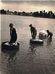 Tímárok - kiskunhalasi bőráztatók 1930-as