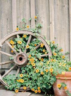 """disorganized72: """"[Coco Tran] """" ✿ ★ ❀ Garden Yard Ideas, Diy Garden Decor, Garden Projects, Garden Art, Backyard Ideas, Diy Projects, Wagon Wheel Garden, Wagon Wheel Decor, Rustic Gardens"""