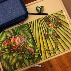 And... 'Colourful Chameleon' and 'Gecko Love' together as a spread in the book #magicaljungle #johannabasford ! Looking forward to getting into Johanna's Christmas book next. Finally had the chance to get to a book store to buy it ❤️✍️. Going to try out #staedtler triplus fine liners. #jardimsecretolove #selvamagicaoficial #secretforestocean #desenhoscolorir #coloring_secrets #artecomoterapia #coloringbook #coloring #colouring #coloringforadults #coloringmasterpiece #coloringtherapy #ad...