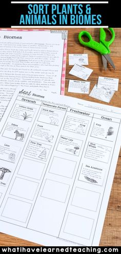 Sort Animals and Plants into Biomes Third Grade Writing, Third Grade Science, Fourth Grade, Second Grade, Leadership Activities, Physical Education Games, Science Lessons, Life Science, Science Fun