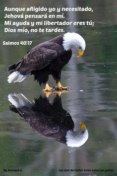 Los ojos del Señor están sobre los justos...Salmos 40:17