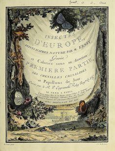 Papillons d'Europe, peints d'après nature /. A Paris :Chez P.M. Delaguette, imprimeur-libraire ... ;1779-1792 [i.e. 1793]. biodiversitylibrary.org/page/53453595