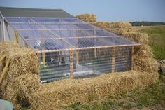 Here is how to maximize your garden yield with a straw greenhouse. If you like to harvest your own produce, you will know how annoying it is when the season comes to an end. Greenhouses provide excellent protection and the right environment for growing produce that you otherwise might not be able to due to …