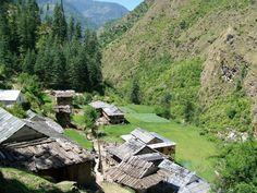 Gulshaini Village, Himachal Pradesh