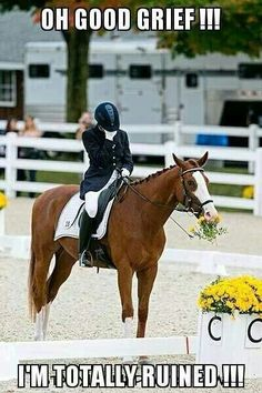 I can see my horse doing this to me...