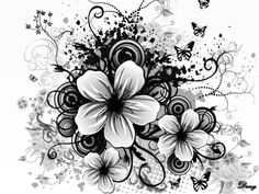 black and white flower wallpaper dowload free. Black And White Flowers, Black And White Background, Black And White Pictures, Black White, White Flower Wallpaper, Black Wallpaper, White Flower Tattoos, Black Tattoos, Abstract Flowers