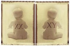 Babies with xx and xy chromosomes - Photo © Ann Cutting/Photo Library/Getty Images