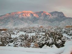 A beautiful snowy sunset on the Sandia Mountains, Albuquerque, Visit Santa Fe, rent a cozy historic adobe home in tome, good winter rates, walking distance to the plaza, check it out Airbnb 2562597, Winter in New Mexico is beautiful for skiing, snow shoeing and hikes under the full moon.