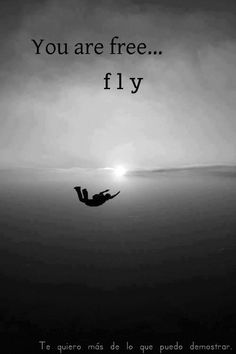 You are free... fly