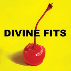 divine fits - a thing calle divine fits (u.s.a., 2012)