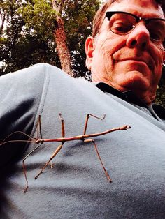 Walking Stick, Tennessee style, 5 inches long.