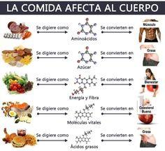 lista de alimentos con proteinas y grasas - Buscar con Google